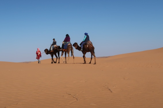 Camel ride to Berber camp